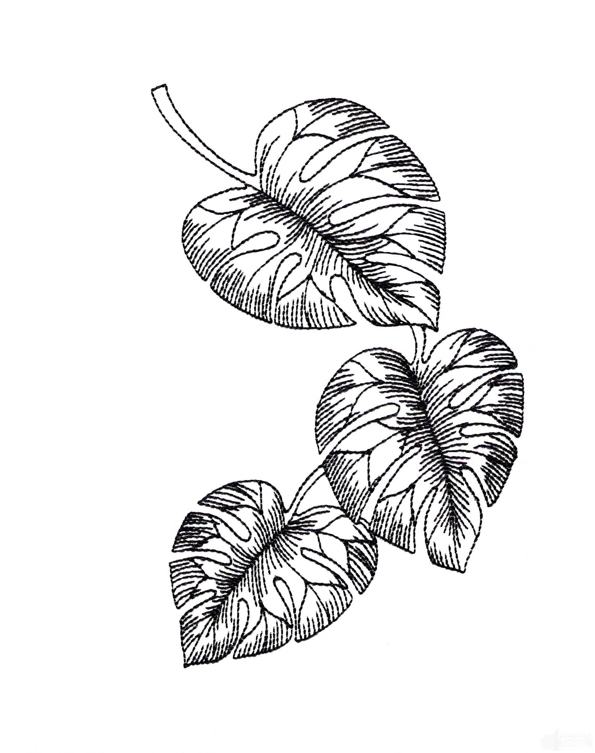 Hawaiian Flower Line Drawing : Bot tropical floral sketch embroidery design classic