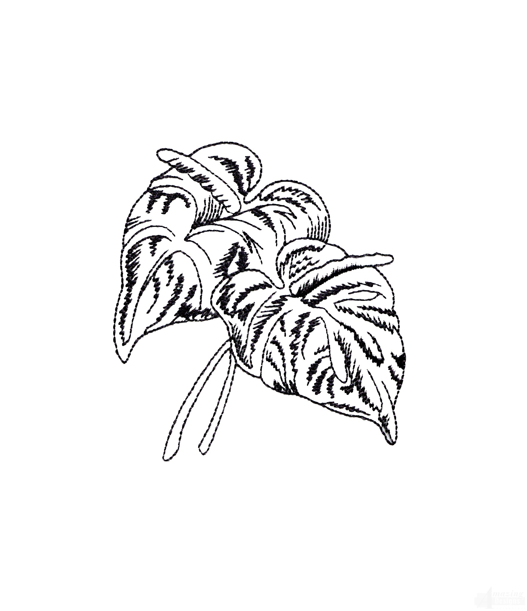 Bot406 Tropical Floral Sketch Embroidery Design