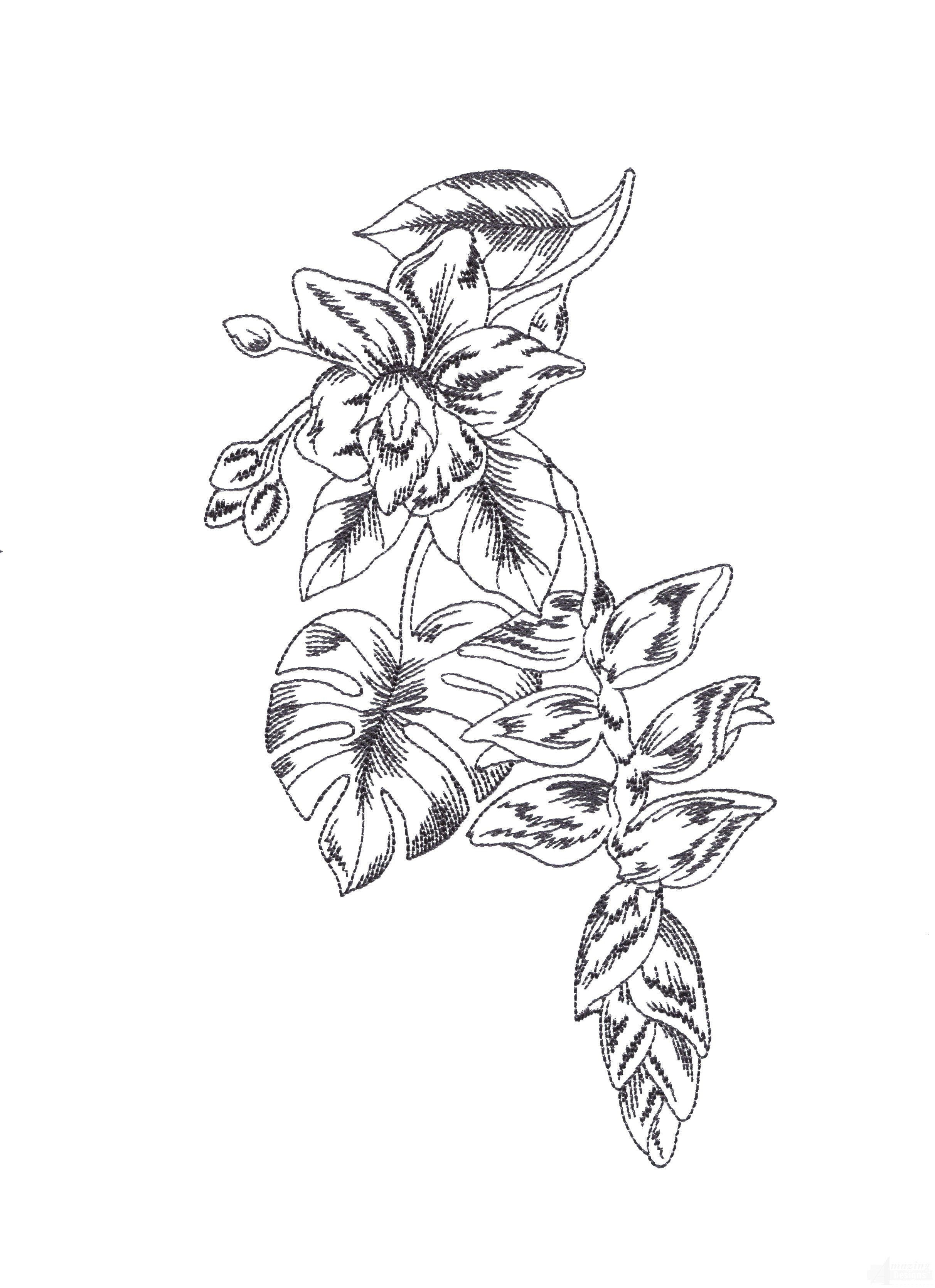 Bot426 Tropical Floral Sketch Embroidery Design