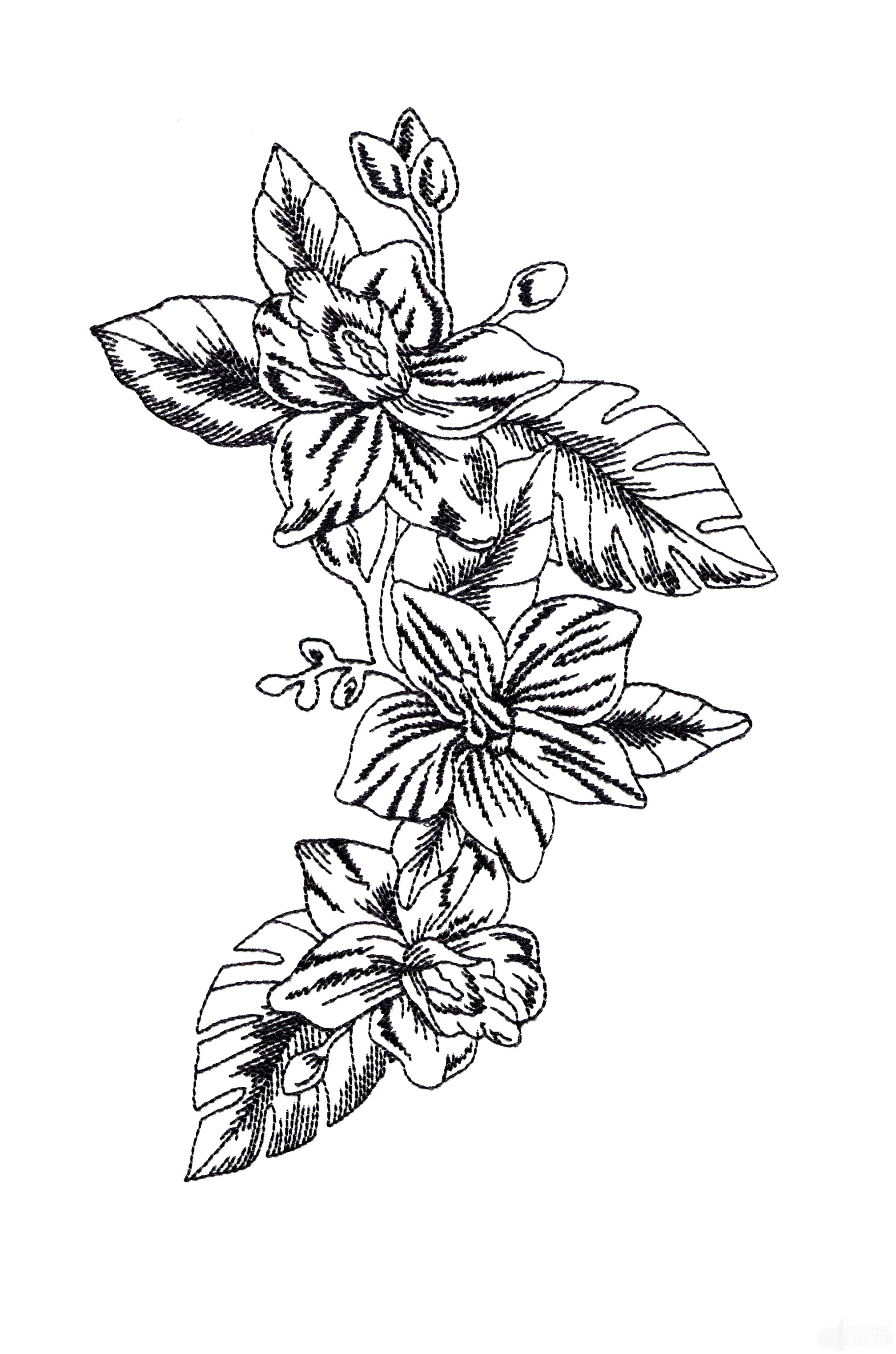 Bot432 Tropical Floral Sketch Embroidery Design