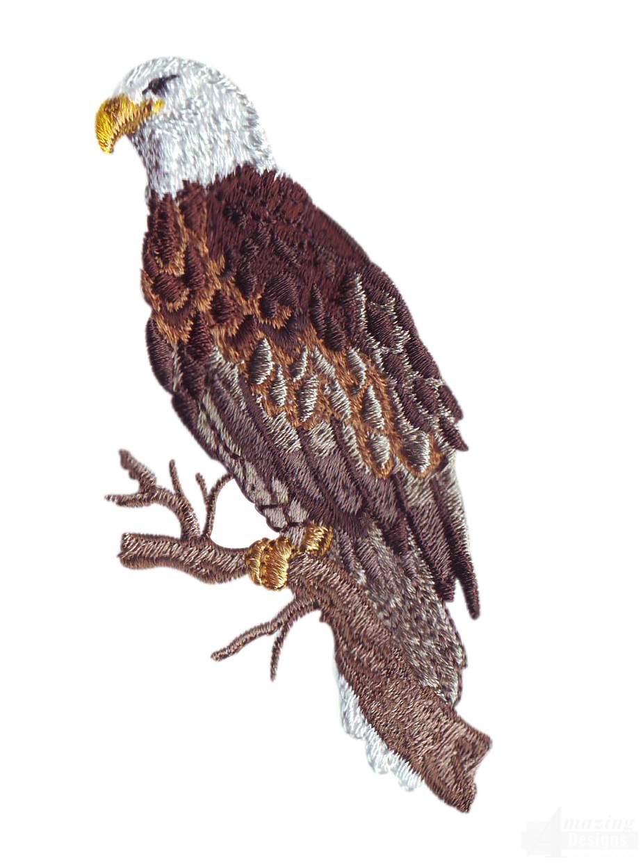 Eagle On Branch Embroidery Design