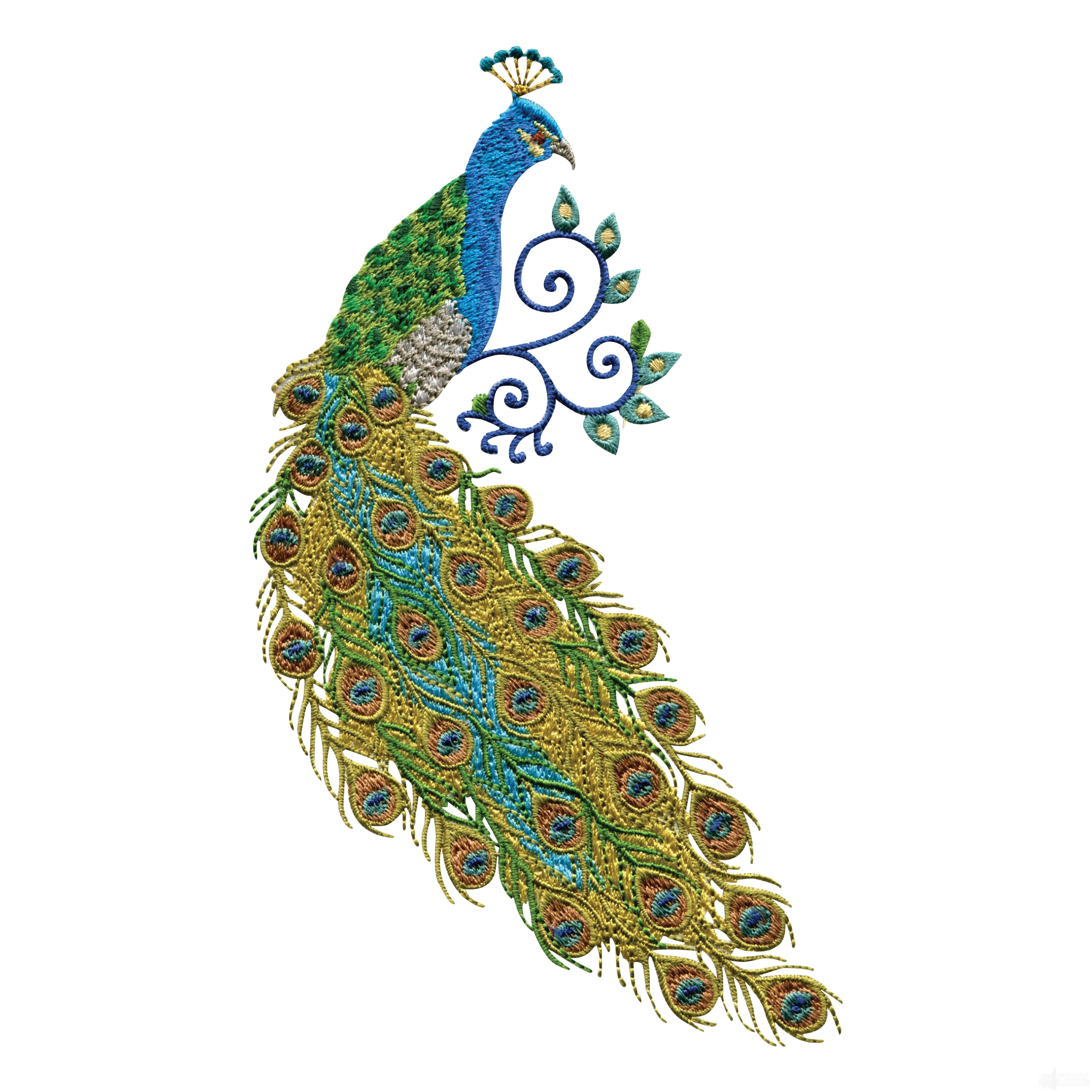 swnpa123 peacock embroidery design