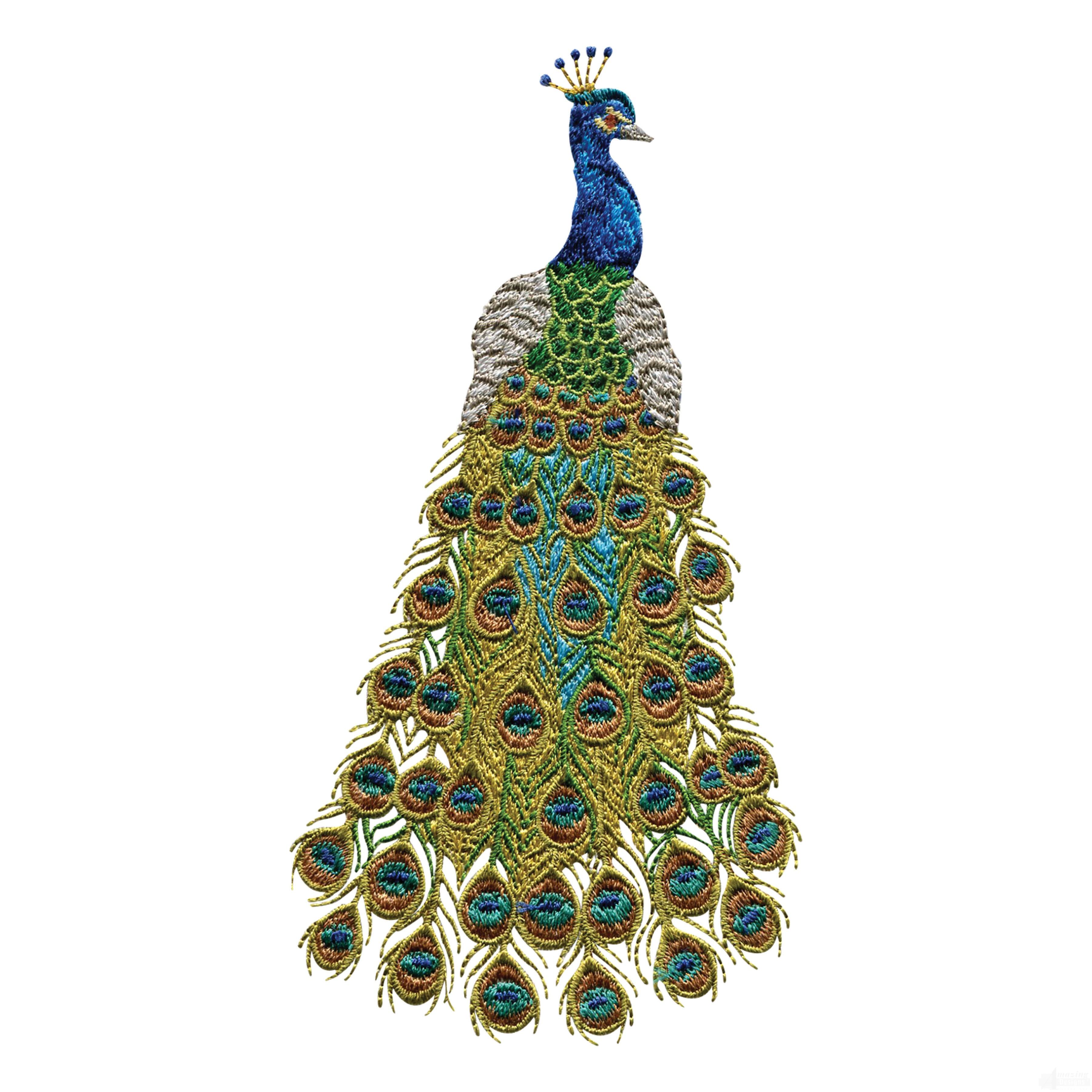 swnpa124 peacock embroidery design