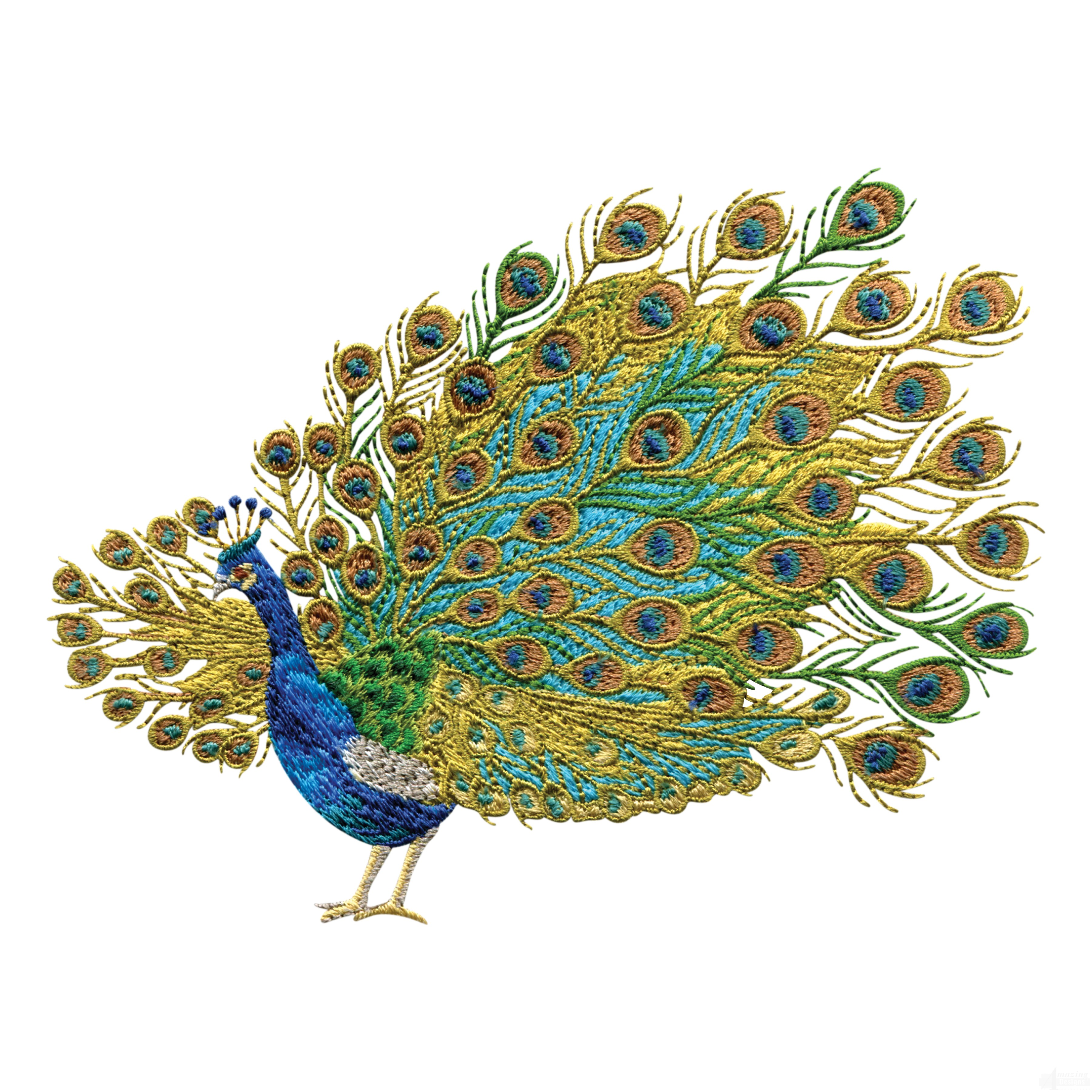 swnpa125 peacock embroidery design