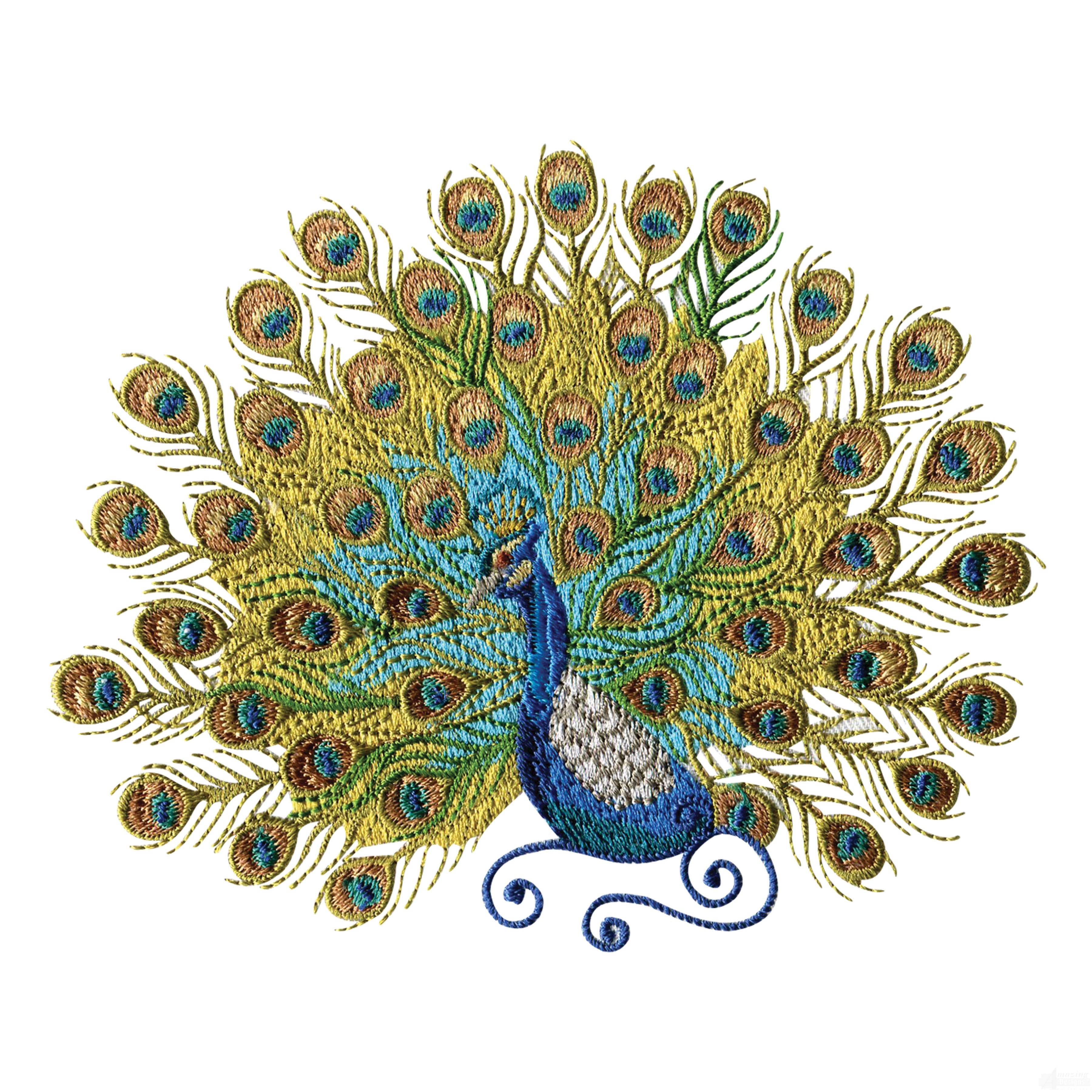 Swnpa126 Peacock Embroidery Design