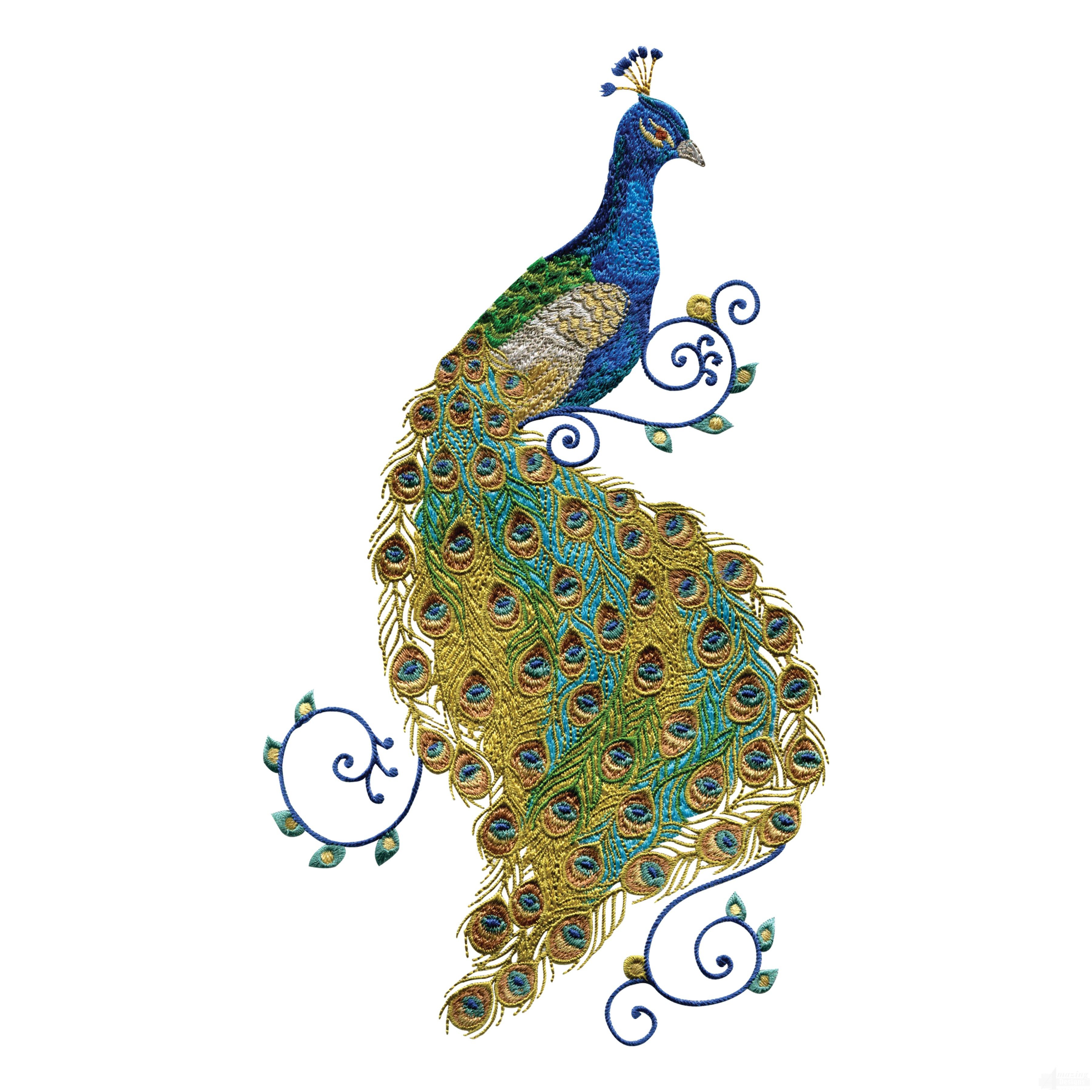 swnpa136 peacock embroidery design Zoo Animal Clip Art free clipart for digitizing embroidery
