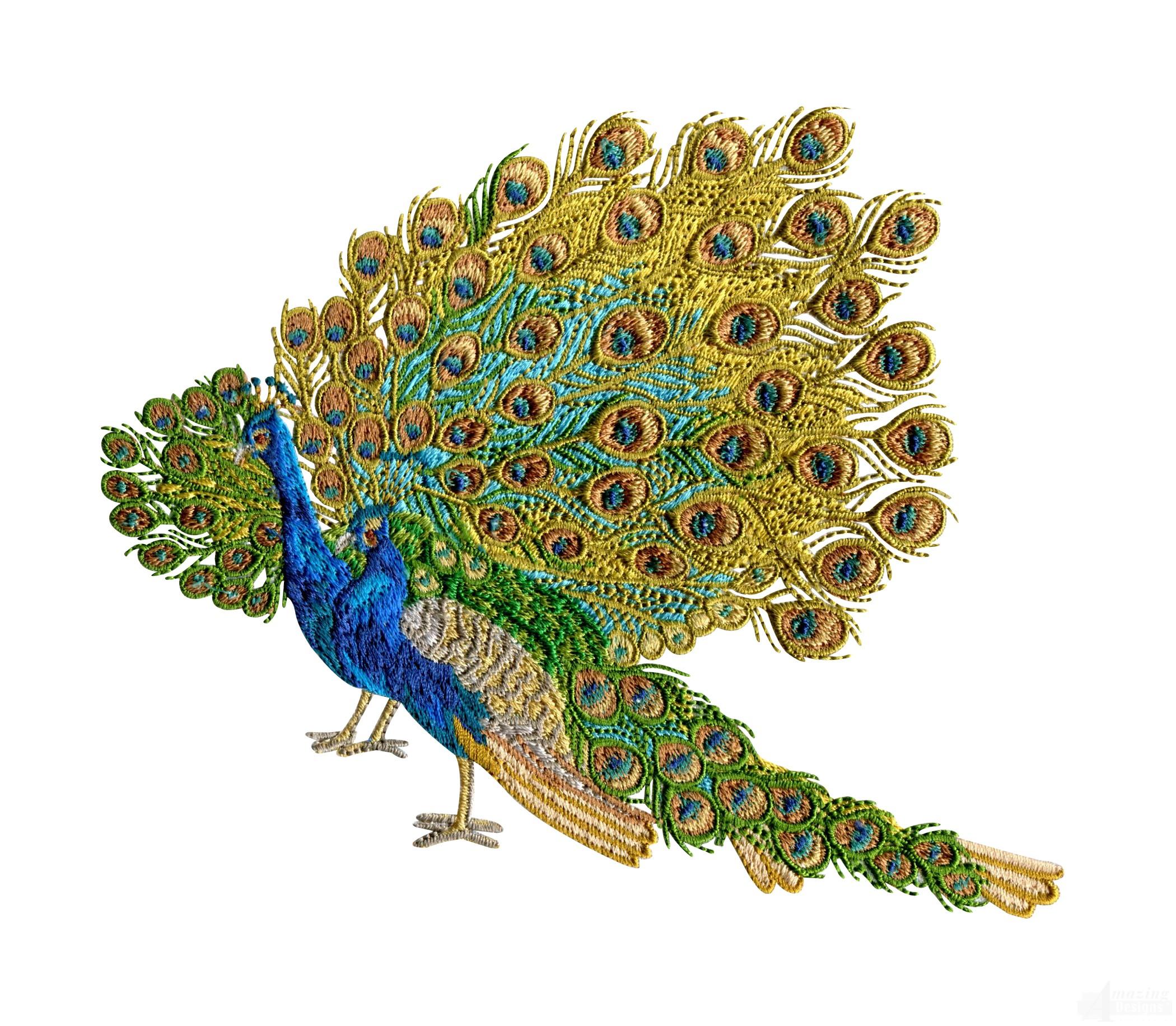 swnpa137 peacock embroidery design