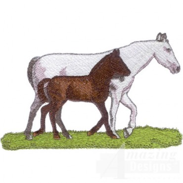 White And Brown Horses