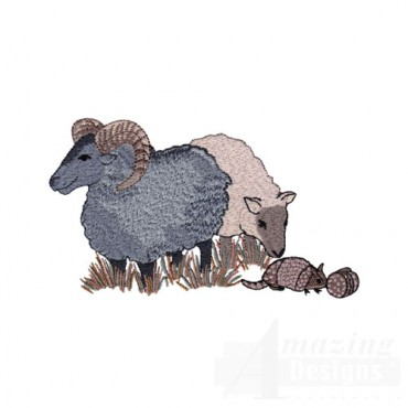 Sheep and Armadillo