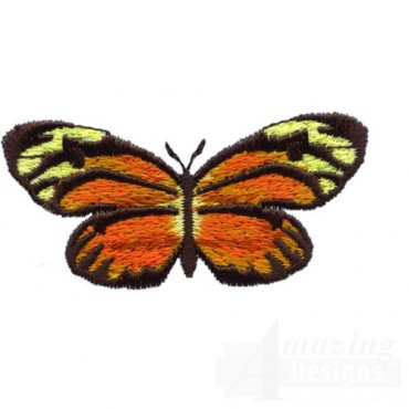 Orange Butterfly-Round Wings