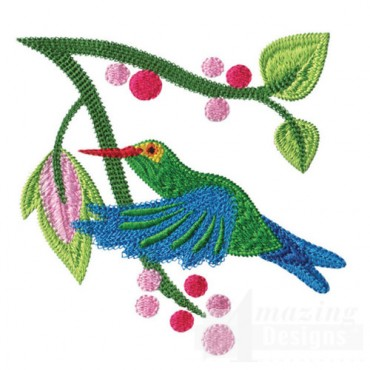 Jacobean Hummingbird 1