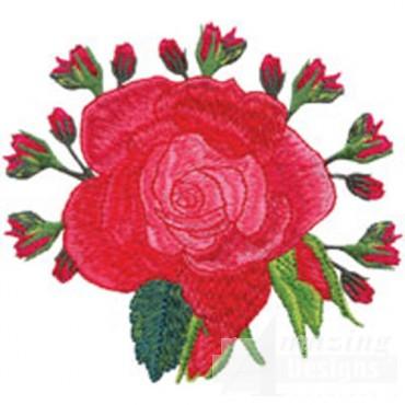 Red Rose W/buds