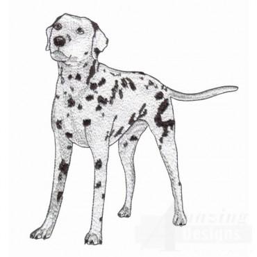 Dog Breeds II