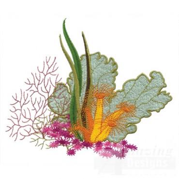 Coral Plants 2