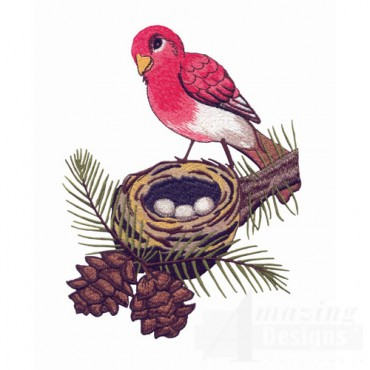 Rose Finch And Nest
