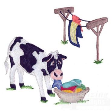 Cow Laundry