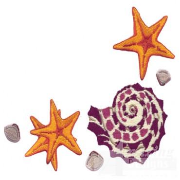 Seashells Corner