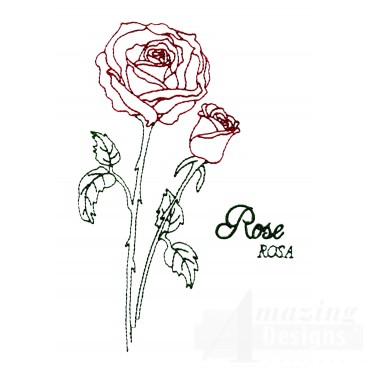 Large Rose Rosa Embroidery Design