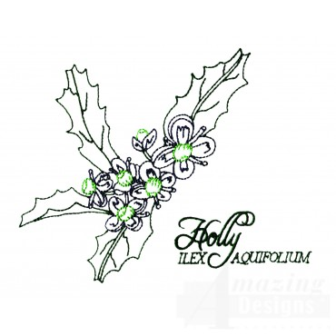 Large Holly Ilex Aquifolium Embroidery Design