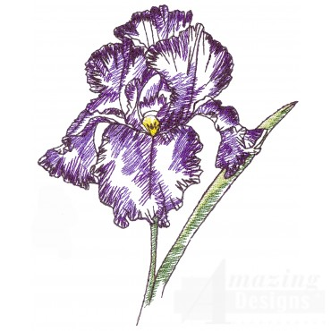 Iris Sketchbook Flower Embroidery Design
