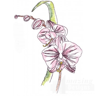 Orchid Sketchbook Flower Embroidery Design
