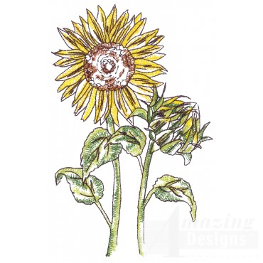 Sunflowers Sketchbook Flower Embroidery Design