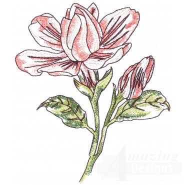 Gardenias Sketchbook Flower Embroidery Design