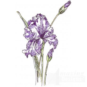 Irises Sketchbook Flower Embroidery Design