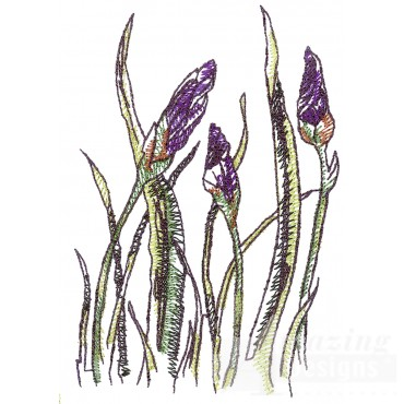 Irises Sketchbook Embroidery Design