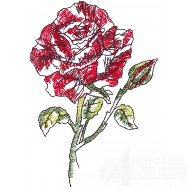 Roses Sketchbook Flower Embroidery Design