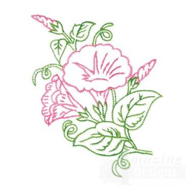 Botanical Outlines I
