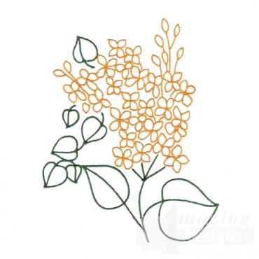 Floral Outline