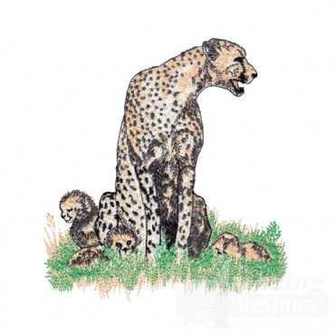 Cheetah and Pups