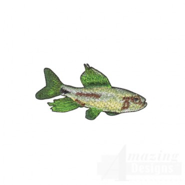 Fish with Large Green Fins