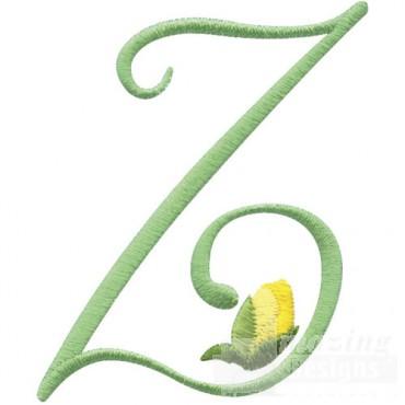 2 Inch Z