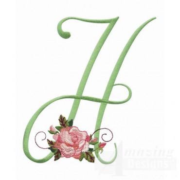 5 Inch H