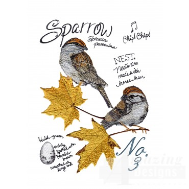 Bird201 Sparrow Bird Study Embroidery Design