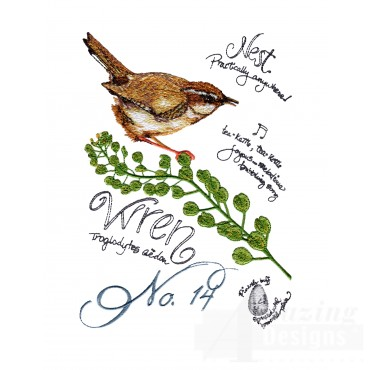 Bird211 Wren Bird Study Embroidery Design