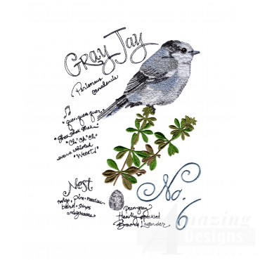 Bird220 Gray Jay Bird Study Embroidery Design