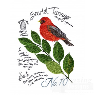 Bird222 Scarlet Tanager Bird Embroidery Design