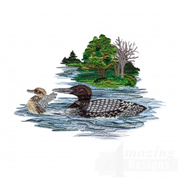 Loon And Duckling 2