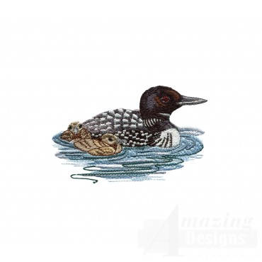 Loon And Duckling 4