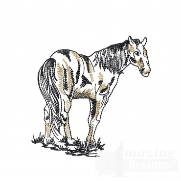 Standing Prairie Horse Embroidery Design