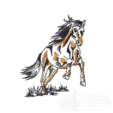 Spirited Prairie Horse Embroidery Design