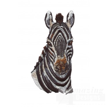 Zebra Head Serengeti