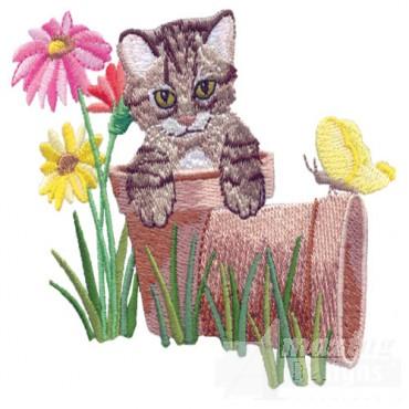 Kitten On Pots