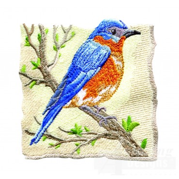 Bluebird 1