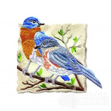 Bluebirds 1