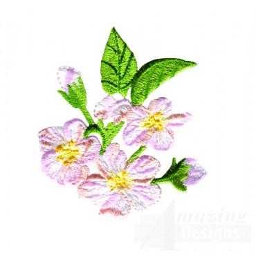White Crabtree Blossom 1