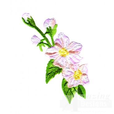 White Crabtree Blossom 2